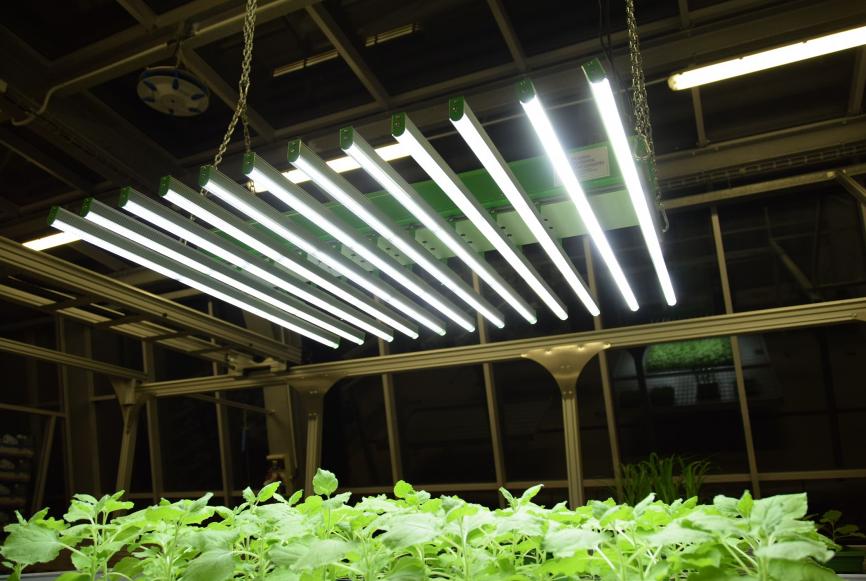 杆式智能LED光源(2018-4)