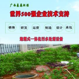 森淼定制 S-050小型卫生院医疗废水污水处理设备 医院污水处理