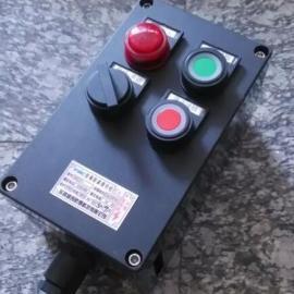 BZC55-A2D2K1G防爆操作柱