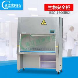 双人全排风二级生物安全柜BSC-1600IIB2