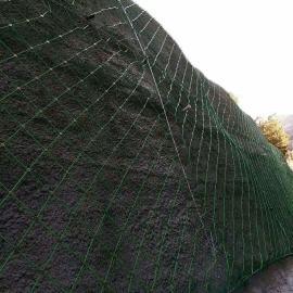 六盘水边坡防落石用主动防护网-sns边坡防护网今日8折特卖
