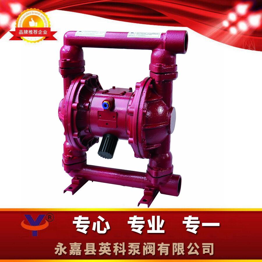 温州四氟铸铁气动隔膜泵丁青气膜泵配橡胶双隔膜泵