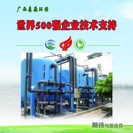 广西专业生产不锈钢活性炭机械过滤器 压力过滤器水净化系统设备