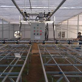温室大棚美国喷头喷水施肥自动往返育苗喷灌机大棚喷灌机喷水车