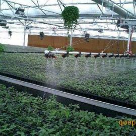 自走式遥控调速美国喷头温室大棚蔬菜育苗喷灌机大棚育苗水车