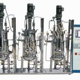 干红葡萄酒发酵装置