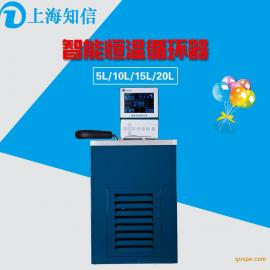 知信仪器智能恒温循环器低温泵恒温泵恒温水浴ZX-5B
