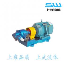 高温型齿轮油泵 高温型齿轮泵 耐高温齿轮泵