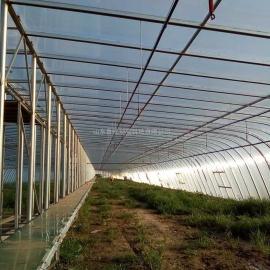 淄博沂源县保温阳光板温室,pc阳光板采光瓦