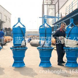 1000QHB-50型潜水混流泵