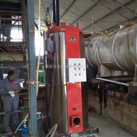 厂家直销燃气锅炉燃气立式蒸汽锅炉节能环保天然气锅炉