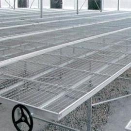 温室活动苗床