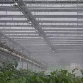 温室大棚雾化降温加湿系统