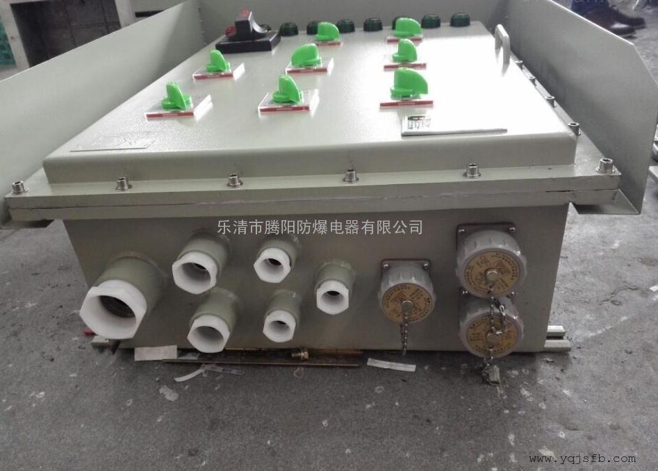 BFXJ-020防爆检修电源箱