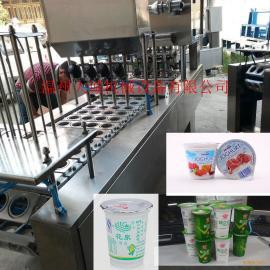 温州DC-JX2018新款绿豆沙冰机灌装封口机源头厂家