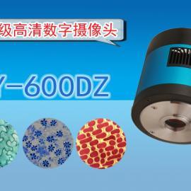 高清CCD数字摄像头WY-600DZ