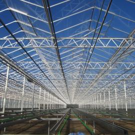 贵温室种植大棚公司