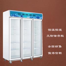 惠州文物恒温恒湿柜,精密模具储存柜