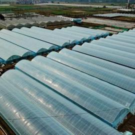 贵州蔬菜大棚生产厂家