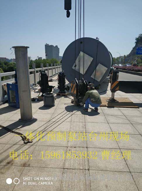 供应国内一体化预制泵站