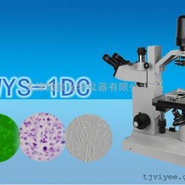 三目倒置生物显微镜WYS-1DC