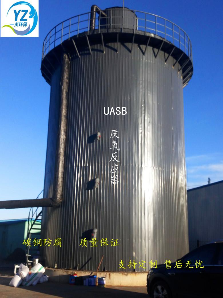 UASB反应器厌氧反应器22m3/h畜禽养殖、酿酒高浓度废水 碳钢定制