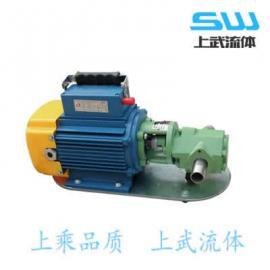 微型手提�油泵 手提式�X��油泵 手提�X�泵