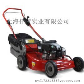 维邦电启动21寸钢底盘割草机 剪草机 草坪机 园林专用WB536HB
