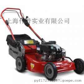 维邦百力通电启动 割草机 剪草机 草坪机园林专用WB506SB-DOV