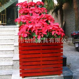 茶餐厅休闲区美观花箱