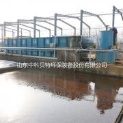 大型食品厂废水处理设备 中科贝特溶气气浮机 行业标准起草单位