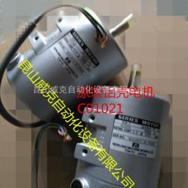 NSM-2进口纽朗NP-7A电机C01021