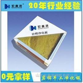 玻镁岩棉净化板|山东宏鑫源|玻镁岩棉净化板价格