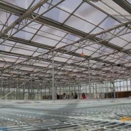 智能喷灌系统-水车-温室灌溉-温室种植-省时省力超值低价
