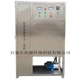高浓度臭氧水处理一体机