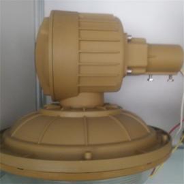 护栏立杆式SBD1103-YQL50免维护节能防爆灯