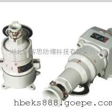 ZHX226-32A/X AC220V/380V 防爆AC插销 工业插座 4芯 斜插式