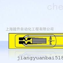 德国HBM LS31 可焊接应变片