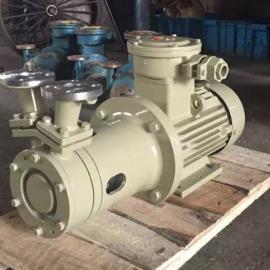 高扬程磁力泵制造商 CWB20-65不锈钢磁力旋涡泵 耐腐蚀泵