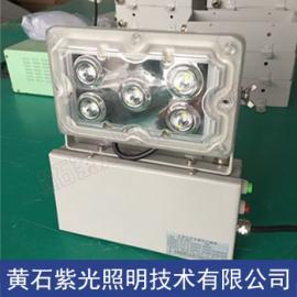 NFE9178 应急壁灯NFE9178固态免维护应急灯