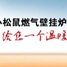 欢迎访问/武汉小松鼠壁挂炉维修/官方网【小松鼠壁挂炉急修精修】