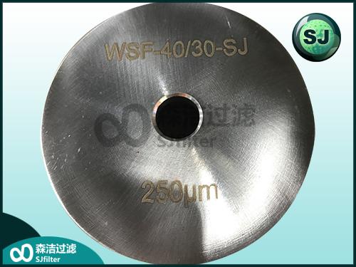 天然气滤芯SF30/30
