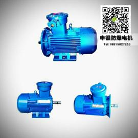 防爆电机源头生产厂家 380V国标全铜线三相异步电动机隔爆型