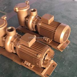 DXD铜泵厂家,游水池循环水铜泵,泳池水处理铜泵