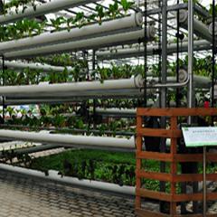 智能温室大棚系统