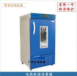 100升电热恒温培养箱 微生物细菌种子发芽箱催芽箱 FYX-100A