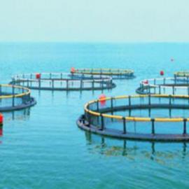 托普云农水产养殖物联网系统
