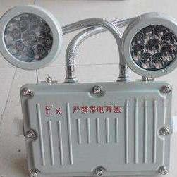 BAJ52-B/C20双头防爆消防应急灯