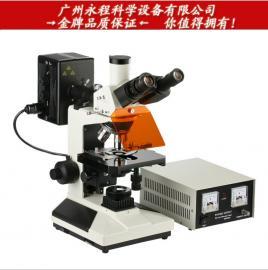 广州粤显 L3201LED 紫外紫蓝绿四组激发落射荧光显微镜