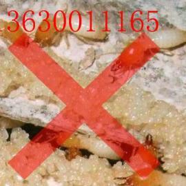 木材杀虫剂厂家 广东防虫剂图片